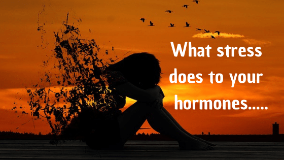 WHAT STRESS DOES TO YOUR HORMONES