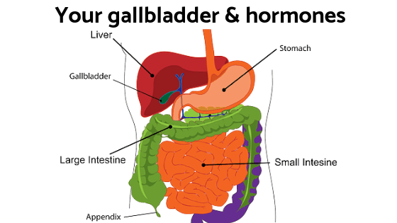 Don't overlook your gallbladder & its affect on your hormones